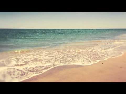The Mermen - The Goodbye