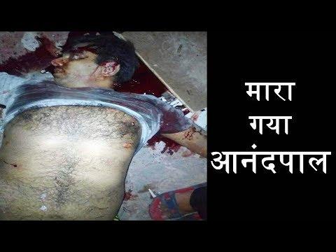 मारा गया  Gangster Anandpal Singh | Encounter की पूरी  video