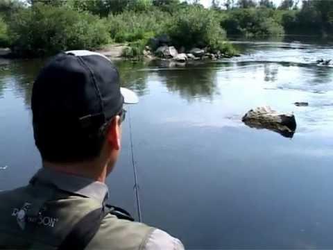 Ловля некрупного хищника спиннингом. О рыбалке всерьез. Выпуск 322 HD