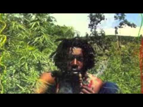 PETER TOSH LIVE INTERVIEW OVER 20 YEARS OLD / TO ALL PETER TOSH FANS / TOUCH-UP TV