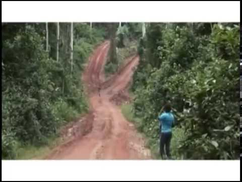 Illegal Logging and Forest Law Compliance in Ghana