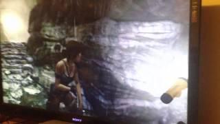 Tomb Raider 2013 bug