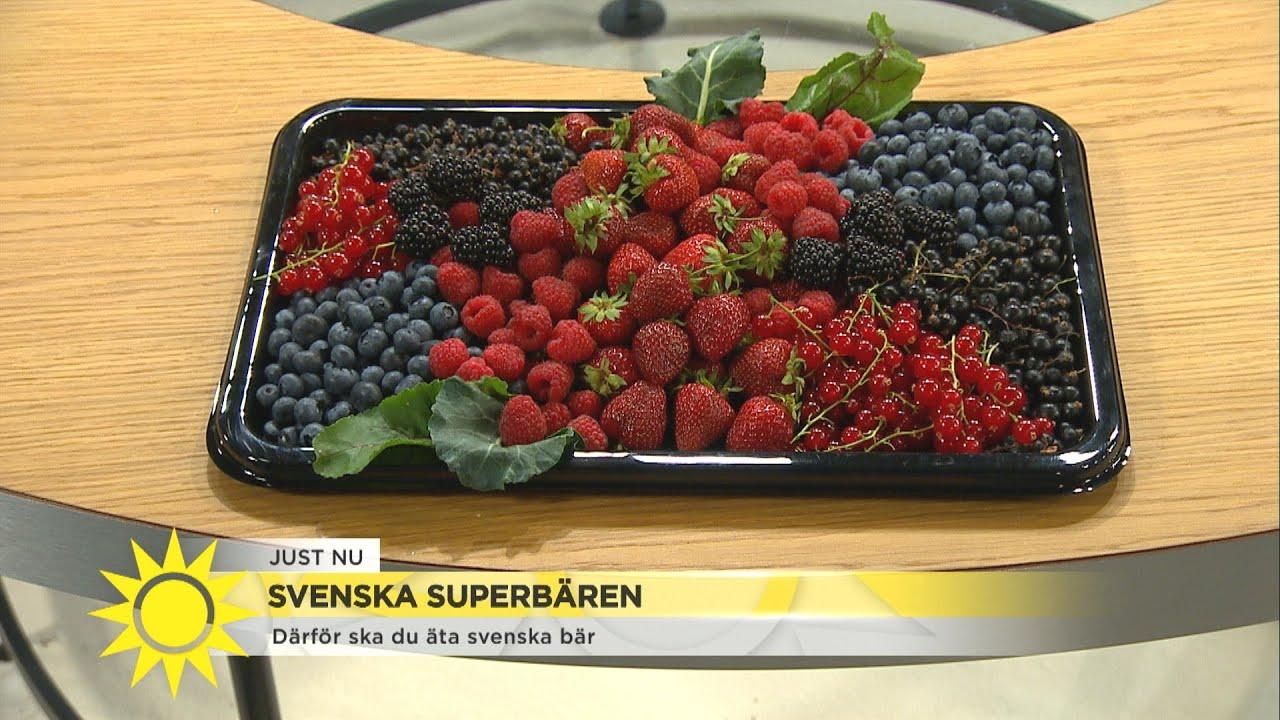 Här är superbären som gör under för hälsan  - Nyhetsmorgon (TV4)