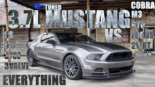 MPT Tuned 3.7L Mustang VS EVERYTHING - 370Z/SS/FOCUS/5.0/3V + MORE!!
