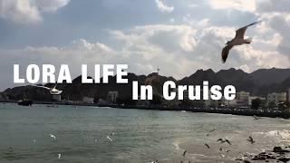 видео: #Круиз по Персидскому заливу #Оман Восточные Сказки 4