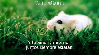 Rata Blanca - El Sueño De La Gitana (Letra Lyrics) HD.