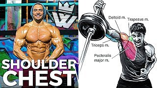Complete SHOULDER & CHEST WORKOUT | 23 Effective Exercises