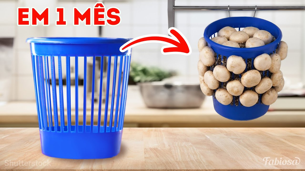 Segredos de jardinagem de especialistas: como cultivar cogumelo, batata e muito mais
