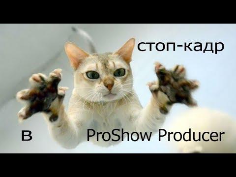 Уроки ProShow Producer для начинающих
