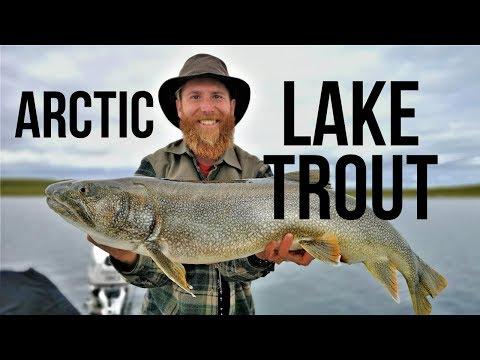 FISHING At AYLMER LAKE LODGE In The NORTHWEST TERRITORIES - HUGE LAKE TROUT