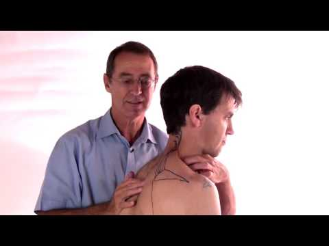 Trigger Point Therapy - Treating Levator Scapulae