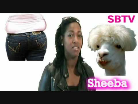 BEAUTIFUL SHEEBA RAYE'S CRAZY INTERVIEW DONT EXPECT THE NORM HERE