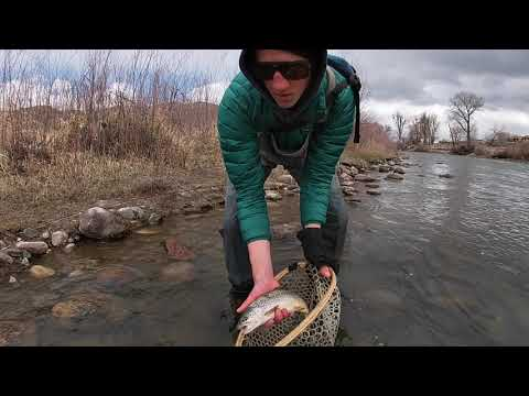 Searching - A Fly Fishing Story
