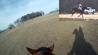 Ride XC With Me! (ft. a huge fail) | GO PRO VLOG | Feb 23, 2016