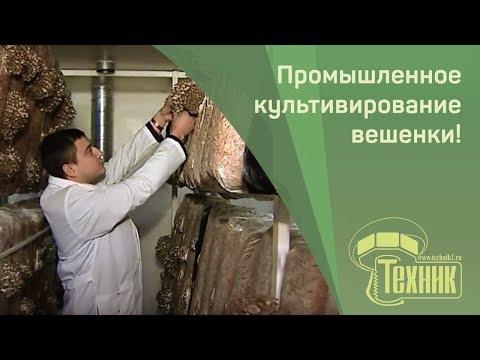 Строительство и монтаж котельных в Барнауле и Алтайском крае