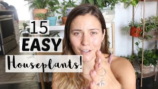 15 Easy Houseplants for Beginners! EASIEST To Care For Indoor Plants!