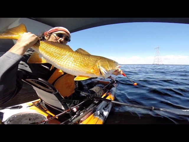 Kayak Fishing: Chasing Redfish  from the 2016 Vibe Sea Ghost 130