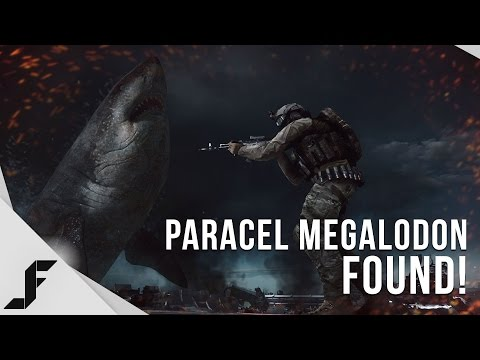 MEGALODON STORY - How the Easter Egg was discovered! | Doovi
