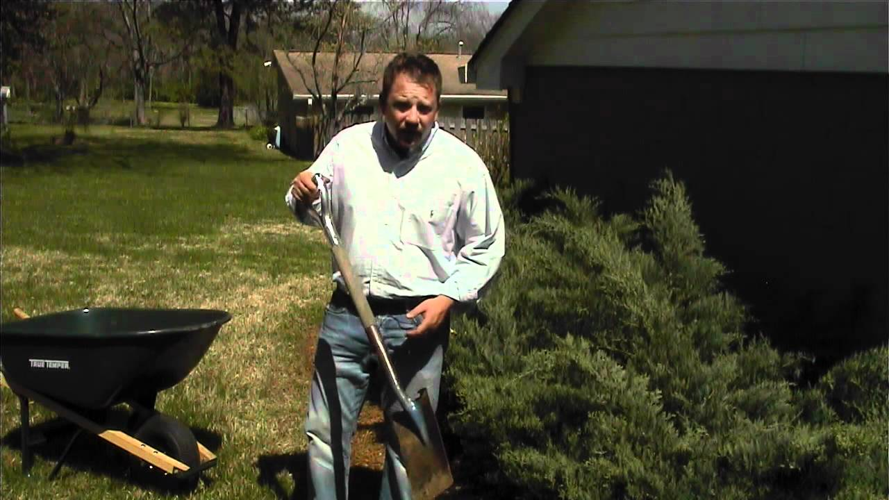how to use a spade for landscape edging youtube