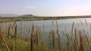 Рыбалка на Голанах