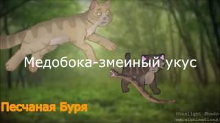 Коты воители (Смерти 2)