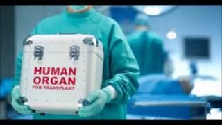 Влияние пересадки органов на человеческое сознание - Послание Основателей(Влияние пересадки органов на человеческое сознание - Послание Основателей. ..., 2016-09-05T15:06:30.000Z)