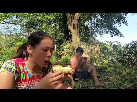 Survival skills - Grilled corn on the banks of a delicious stream encountered large fish