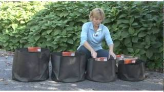 Container Gardening Made Easy With Smart Pots