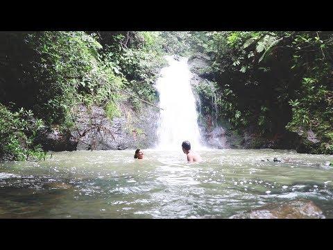 Weltreise Tag 537 • Cockscomb Jaguar Reservat: Tiger Fern Trail • Belize • Vlog #084