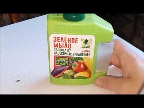 Зелёное мыло для орхидей. Что это такое? Обрабатываем новинку.