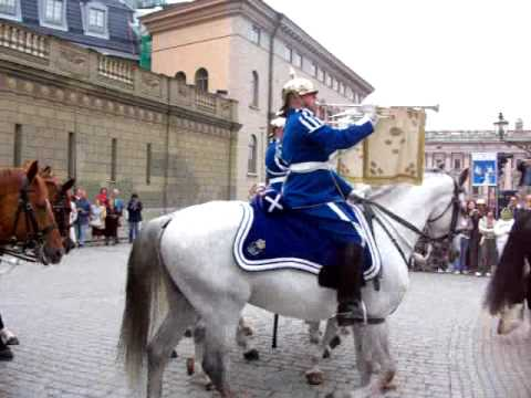 Swedish Changing of the Guard 2