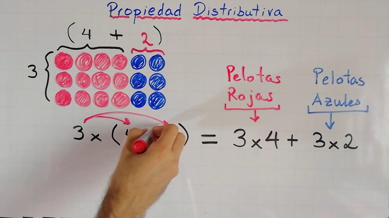 Propiedad Distributiva Explicación Gráfica Y Aritmética Propiedades De La Suma Y Multiplicación Youtube