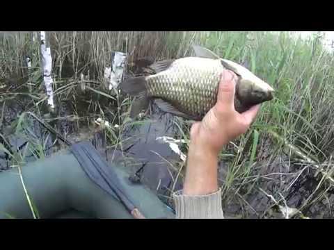 Рыбалка в полнолуние