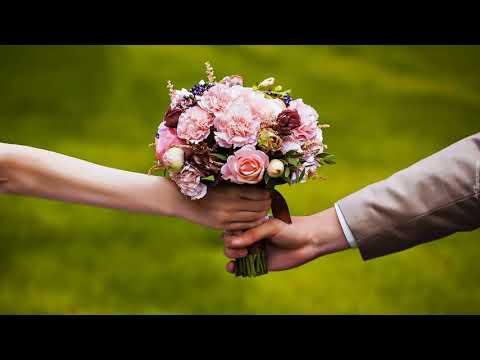 Сколько денег подарить на свадьбу молодоженам?