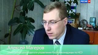 Животные на дачном участке_Вести Дача Россия 24_01_04_15