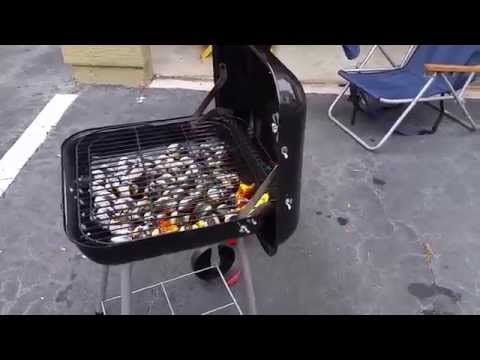 CHARCOAL BACKYARD GRILL GREAT FOR APARTMENT LIVING - REVIEW