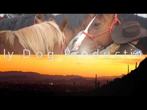 Sly Dog Production Demo Reel 2017 Official