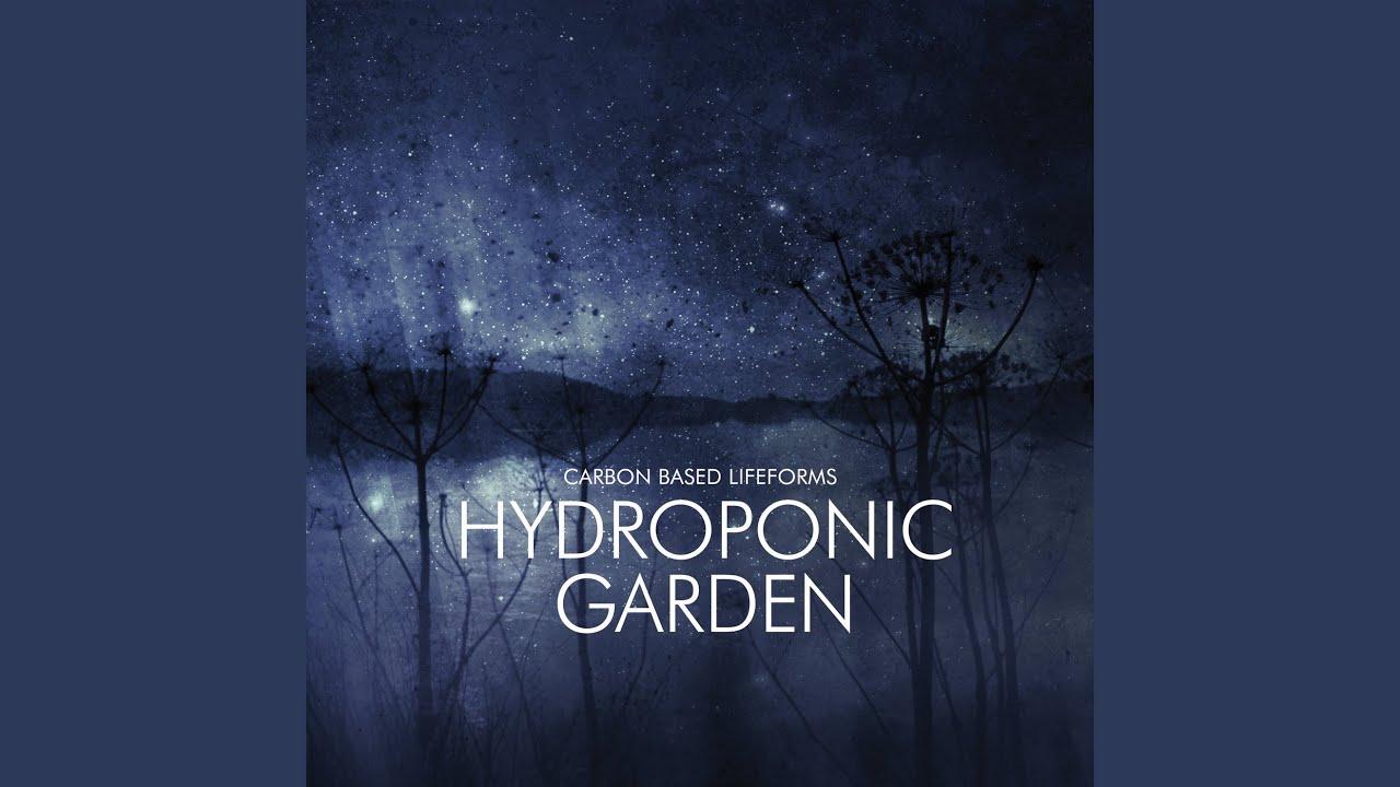 Hydroponic Garden - YouTube