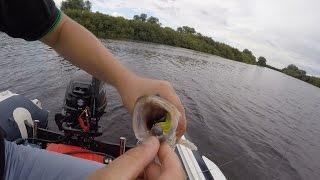 Ловля судака на джиг. Река Мста. Два отчета в одном видео.