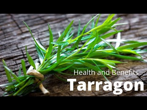 What Science Says About the Health Benefits of Tarragon