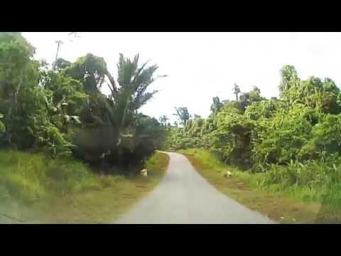 Jayapura to Sarmi, Papua Province(25) パプア州のジャヤプラからサルミへ