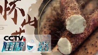 《健康之路》 20190621 一方水土一方药——山药| CCTV科教