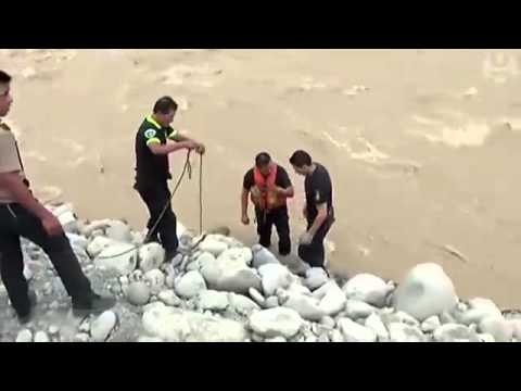 Dog rescued from Rimac river flood in Peru