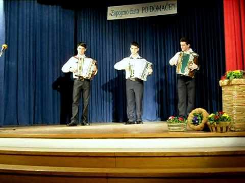 Ansambel Trio M - Živijo polka