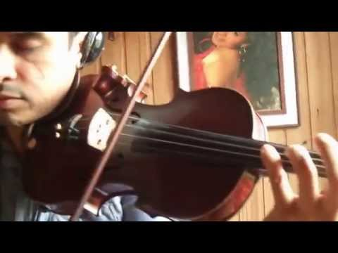 Avicci Wake me Up - Douglas Mendes Violin Cover