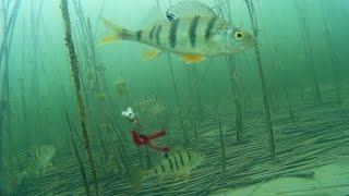 Рыбалка на озёрах  Чаны Сартлан