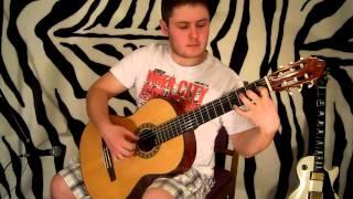 В мире животных на гитаре - Guitar Zebra