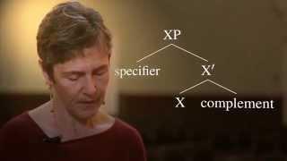 Generative Syntax 4.1: The X-bar Schema