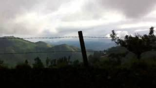 Tea Plantation of munnar