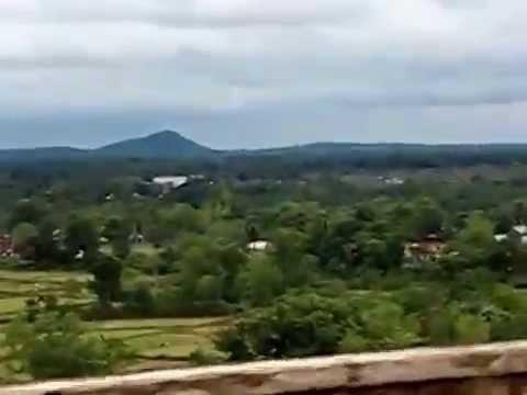 Mukutmanipur green forest